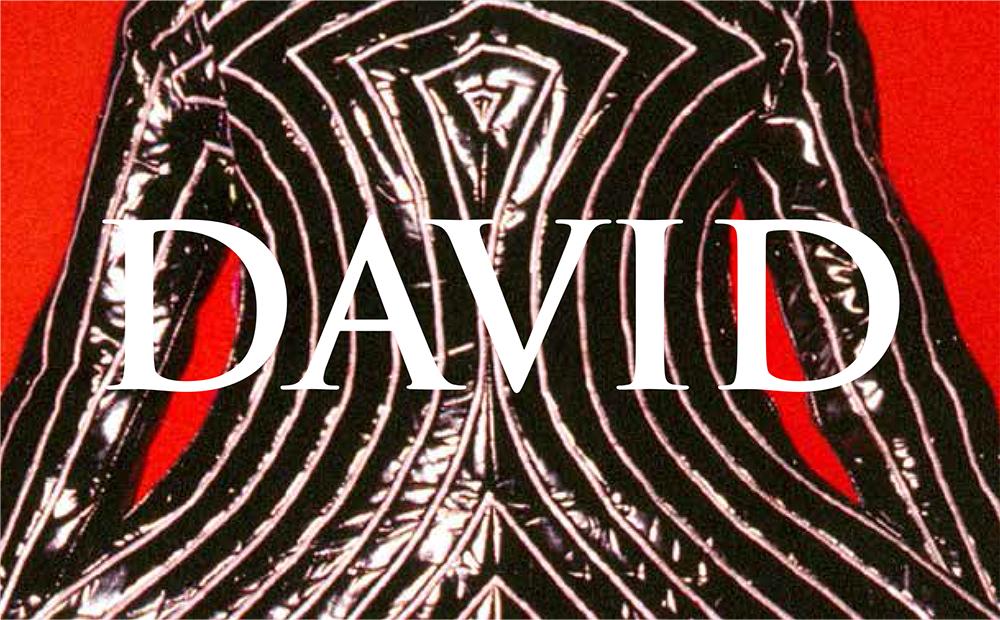 Visuel David Bowie